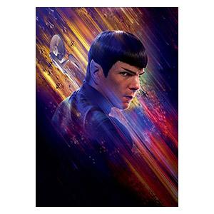 Star Trek. Размер: 50 х 70 см